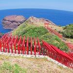 青い海と真っ赤な鳥居のコントラストが絵になる!1度は行きたい「元乃隅稲成神社」