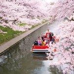 お得なチケットもご紹介! 富山市内観光はノスタルジックな「レトロ電車」♪