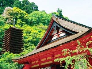 談山神社 神廟拝所 十三重塔