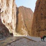 みんながしてない旅がしたいの♡モロッコの秘境「トドラ渓谷」がオススメ