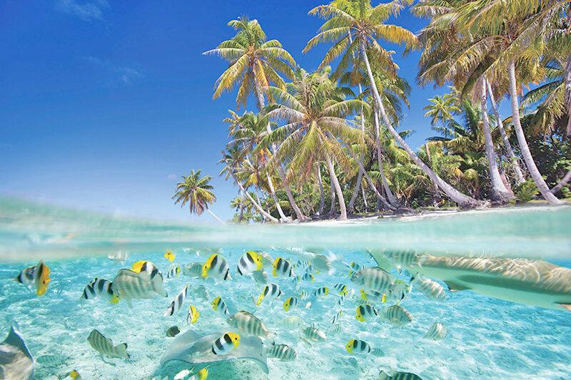 絶景ビーチに世界遺産タプタプアテアのマラエ!みどころいっぱいタヒチ観光♪