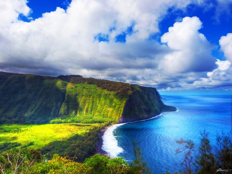 ハワイ島の自然