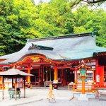 日本有数の霊場、和歌山の「熊野那智大社」でパワーチャージしよう!