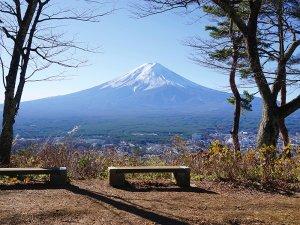 展望台からの富士山の画像