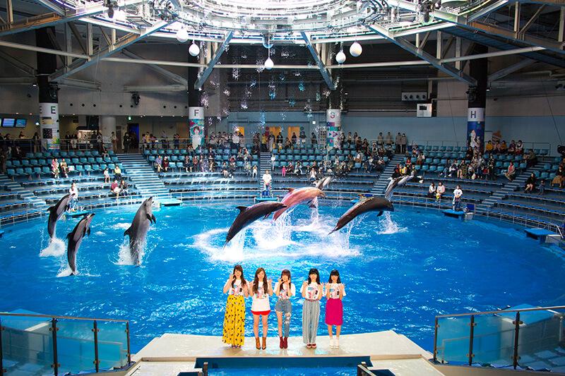 アクアパーク品川×Little Glee Monster 海×最先端アートエンターテインメントでアートの世界へ♪