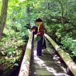 小島藤子と宮崎香蓮の青森旅後編。奥入瀬渓流やブナの原生林に囲まれた自然を体感!