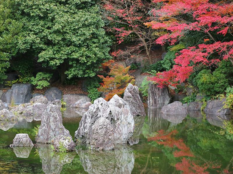 万博記念公園内・日本庭園