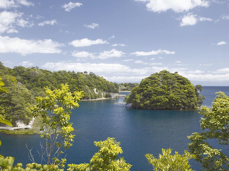 百楽荘からの眺望