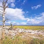 まるでウユニ塩湖に来たみたい♡北海道・野付半島の絶景と周辺の名湯をご紹介
