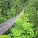 カナダ・バンクーバーの自然を満喫♪「キャピラノ吊り橋公園」でスリルと絶景を楽しむ!