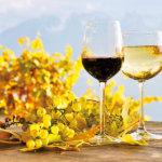 ワイン好き必見!カリフォルニアワインを楽しむならナパ・バレー「ワイントレイン」