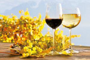 ワインのイメージ画像