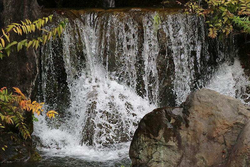 万博記念公園内・滝