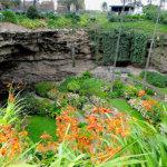 巨大な穴の中の美しすぎる庭園!オーストラリアの「アンファーストン・シンクホール」で過ごす1日♪