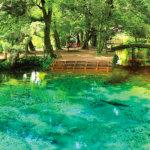 エメラルドグリーンの池!山口県のフォトジェニックスポット「別府弁天池」
