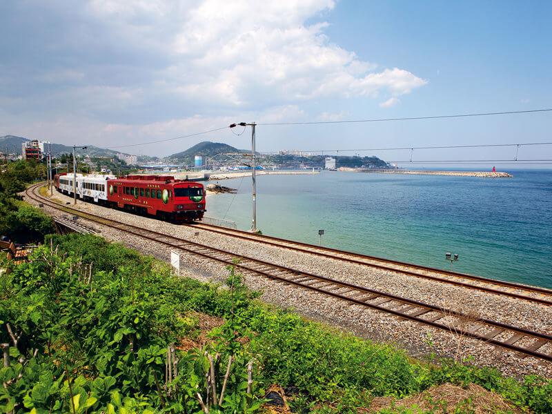 海列車。写真提供:韓国観光公社