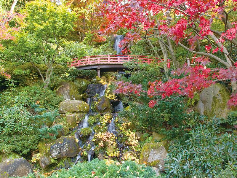 藤田記念公園の滝と橋