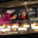 田中道子と伊藤ニーナの鳥取旅。植田正治写真美術館、なしっこ館、あおや和紙工房を巡る