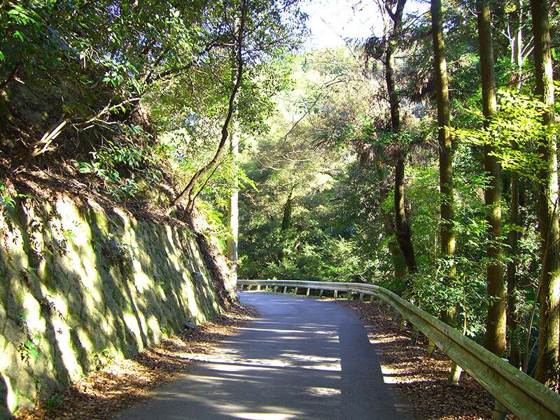 神峯山寺へ向かう林道