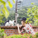里奈ちゃんメロメロ♡ ネコ好きにはたまらないネコの楽園、台湾・猴硐(ホウトン)で癒され散歩