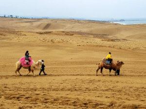 鳥取砂丘。左から田中道子、伊藤ニーナ ©TBS
