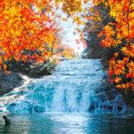 週末プチトリップにオススメ♪千葉県「養老渓谷」で自然を満喫しよう!
