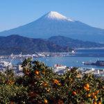 美しい富士山に会いに行く旅♪静岡県「日本平」に出掛けよう!