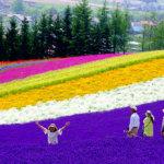 まるで絵本の世界!北海道 美瑛の可愛いゲストハウス「スプウン谷のザワザワ村」