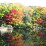 オシャレな都会のオアシス♪「有栖川宮記念公園」に行ってみよう!
