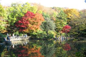 秋の有栖川公園
