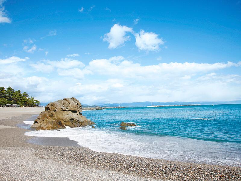 浜の美しい浜辺