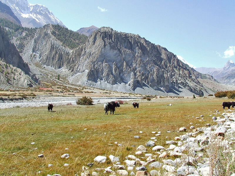 ネパールの山々