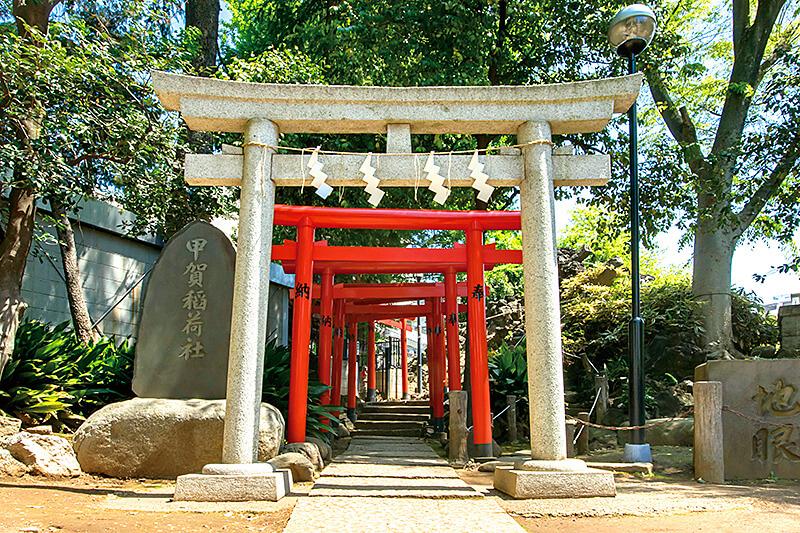渋谷にこんなパワースポットが!?鳩のおみくじが可愛い「鳩森八幡神社」