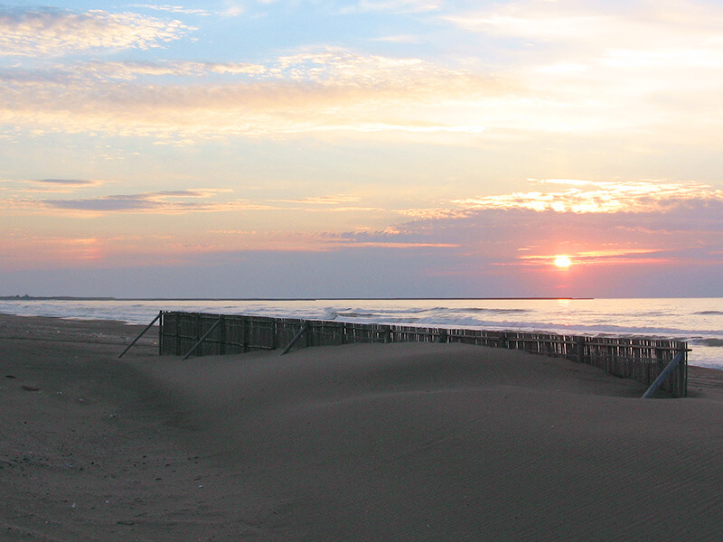 砂丘 イメージ