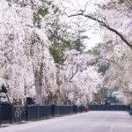 秋田県のおすすめ観光スポット巡り♪美しい自然と風情ある町並みに癒されませんか?