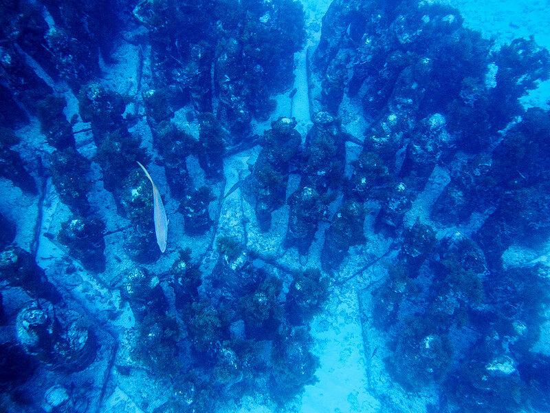海底美術館の石像群
