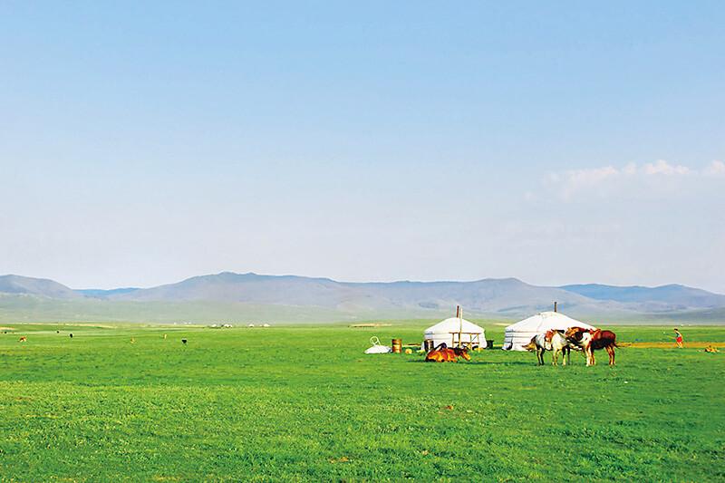 モンゴル パオ