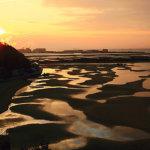 朝日に照らされた干潟は絶景!兵庫県の新舞子海岸でベストショットを狙おう♪