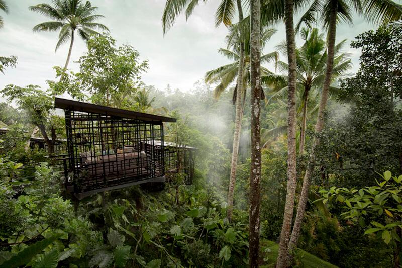 星のやリゾート外観と熱帯雨林