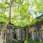 森の中にひっそりと佇む寺院を見てみたい!カンボジアの「ベンメリア」