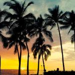 パワー溢れるハワイ島を満喫!自然あふれるスポット3ヵ所