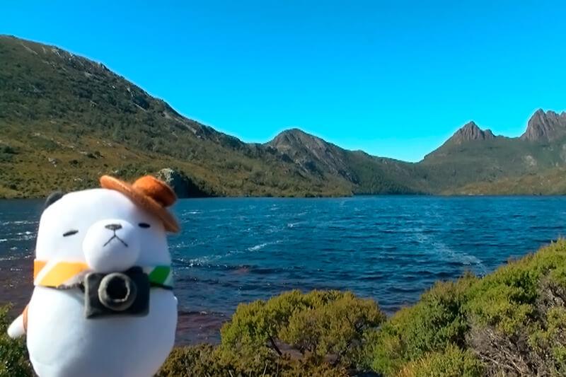 オーストラリア・タスマニアへ。ジーンちゃん ©関西テレビ
