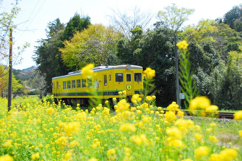 ムーミン列車