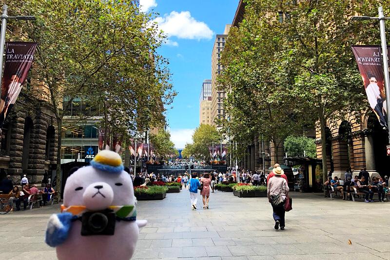 シドニーへ。ジーンちゃん ©関西テレビ