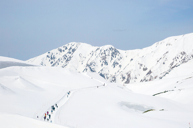 雪の大谷パノラマロード
