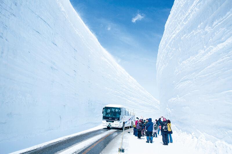 春しか見られない絶景!立山黒部アルペンルートに現れる雪の壁「雪の大谷」を体験しよう