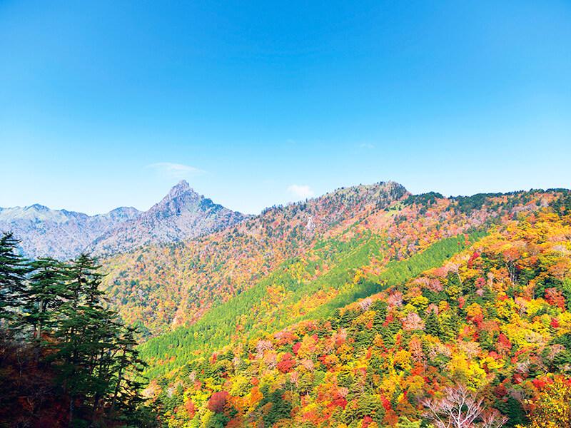 石鎚山の紅葉