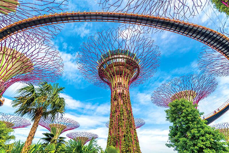 今更聞けないシンガポールの人気スポット!超巨大植物園「ガーデンズ・バイ・ザ・ベイ」