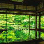 京都の青もみじスポットをご紹介!涼を感じる新緑の旅へ♪