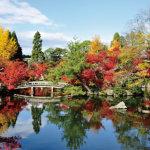 これであなたも京都通♪東山の名刹「永観堂」の四季折々の魅力に迫る!